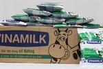 Những điều chưa biết về sữa Fino của Vinamilk