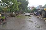 Gần 170 tỷ đồng thiệt hại do bão số 6 gây ra tại Thanh Hóa