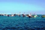 Ngăn cản cứu nạn ngư dân, Trung Quốc đang hành xử một cách vô nhân đạo