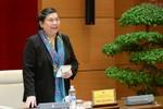 Tiểu ban Văn bản pháp luật và thông tin, tuyên truyền họp phiên thứ nhất