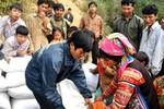 Hỗ trợ Bình Định hơn 1100 tấn gạo