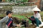 Kiểm điểm lãnh đạo, dừng học thêm, trả lại tiền cho học cho sinh Quảng Vọng