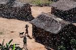 Video: Hàng tỉ con châu chấu phủ kín bầu trời, mặt đất Madagascar