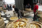 Dân Trung Quốc bán đổ bán tháo vịt con cho trại rắn