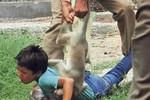 Ảnh: Khỉ trong sở thú nổi điên tấn công cậu bé Ấn Độ
