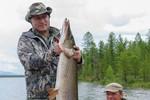 Video: Tổng thống Putin câu được cá nặng 21 kg