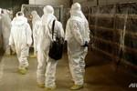 IAEA họp khẩn cấp về khả năng Triều Tiên tái sản xuất plutonium