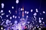 Những màn bắn pháo hoa rực rỡ đêm Giao thừa tại các nước châu Á