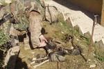Lộ ảnh lính Mỹ ngược đãi thi thể quân nổi dậy Iraq