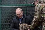 Video: Tổng thống Putin chơi với báo tuyết quý hiếm