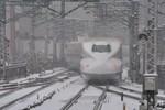 Mưa tuyết kỷ lục tấn công Nhật Bản: 3 người chết, 500 người bị thương