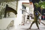 Video: Báo hoang gây náo loạn thành phố ở Ấn Độ