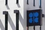 Giá dầu tiếp tục giảm kỷ lục: Thử thách sự kiên nhẫn của OPEC