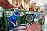 Hà Nội: Sắp phá sản, sáp nhập 11 doanh nghiệp