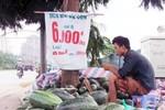 Dưa hấu giá rẻ bày bán tràn lan: Dưa TQ hay dưa Việt?
