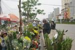 Thị trường hoa ngày 20/11: Giá tăng gấp 3, chủ vườn vẫn không mặn mà