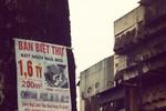 Biệt thự trăm mét ở Hà Nội rẻ hơn... chung cư