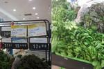 """Ocean Mart bán thực phẩm quên """"date"""", nguồn gốc xuất xứ?"""