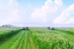 Bí quyết của những ha đất tiền tỷ