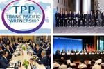 Những mặt hàng nào hưởng thuế suất 0% ngay khi TPP có hiệu lực?