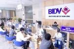 BIDV triển khai gói tín dụng 1.500 tỷ đồng hỗ trợ ngư dân