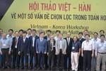 Các nhà toán học Việt Nam – Hàn Quốc cùng chia sẻ ý tưởng nghiên cứu
