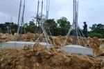 Các chuyên gia bảo tồn động thực vật thế giới lên tiếng bảo vệ Sơn Trà