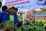 """Sinh viên tham gia chiến dịch """"giải cứu dưa hấu"""" cho nông dân Quảng Ngãi"""