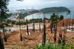 Đà Nẵng thực hiện ý kiến của Phó Thủ tướng về quy hoạch Sơn Trà