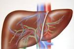 7 dấu hiệu cho thấy gan bạn không khỏe
