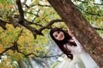 Nô nức chụp ảnh bên cây Lộc vừng Hồ Gươm mùa thay lá vàng