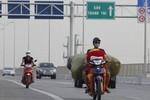 Cố ý vi phạm luật GT ở tuyến đường trên cao: Cũng là một loại tội ác