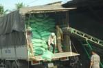 Tủi thân cho nông dân Việt Nam