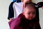 Clip: Bé 4 tháng tuổi ngộ nghĩnh lần đầu cắt tóc nhận nhiều chia sẻ