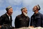 Tân Cương: Cấm người có râu quai nón, mặc quần áo Hồi giáo lên xe bus