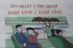 Viện Khoa học giáo dục Việt Nam mới trả lời một nửa vấn đề