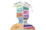 Mong quý thầy làm chương trình, sách giáo khoa mới trung thực, trách nhiệm
