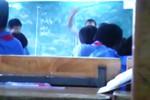 """Vụ giáo viên """"quất"""" học sinh tại lớp: Cô giáo cần bị """"phạt"""" trước?"""