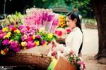 Mê mẩn với sắc xuân muôn màu qua ống kính nhiếp ảnh Việt