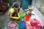 Video: Cận cảnh phố bán cua đồng giã tay ở Hà Nội