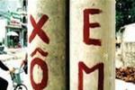 Ảnh cực 'độc' chỉ có ở Việt Nam (15)