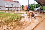 Bùn, đất từ dự án của FLC vùi nhà dân, trách nhiệm của Bộ Tài nguyên đến đâu?