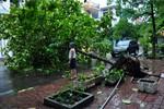 Tại sao đến cuối tháng 9 mới có 3 cơn bão?