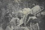 Ký ức Điện Biên - Một thời máu lửa