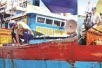 Ngư dân được hỗ trợ 10 nghìn tỷ, vay vốn lãi suất 0% từ 10-15 năm