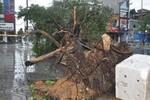 Bão vào Quảng Ninh, hệ thống điện ở Móng Cái bị tê liệt