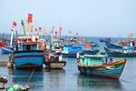Trước lệnh cấm vô lý của Trung Quốc, Việt Nam sẽ làm gì?