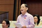 Đại biểu Quốc hội chất vấn chuyện chặt cây xanh Hà Nội và lấp sông Đồng Nai