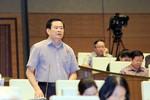 Đại biểu Quốc hội biểu quyết thì phải chịu trách nhiệm trước nhân dân