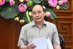 Đề xuất xây dựng trung tâm sản xuất tôm của Việt Nam ở Bạc Liêu